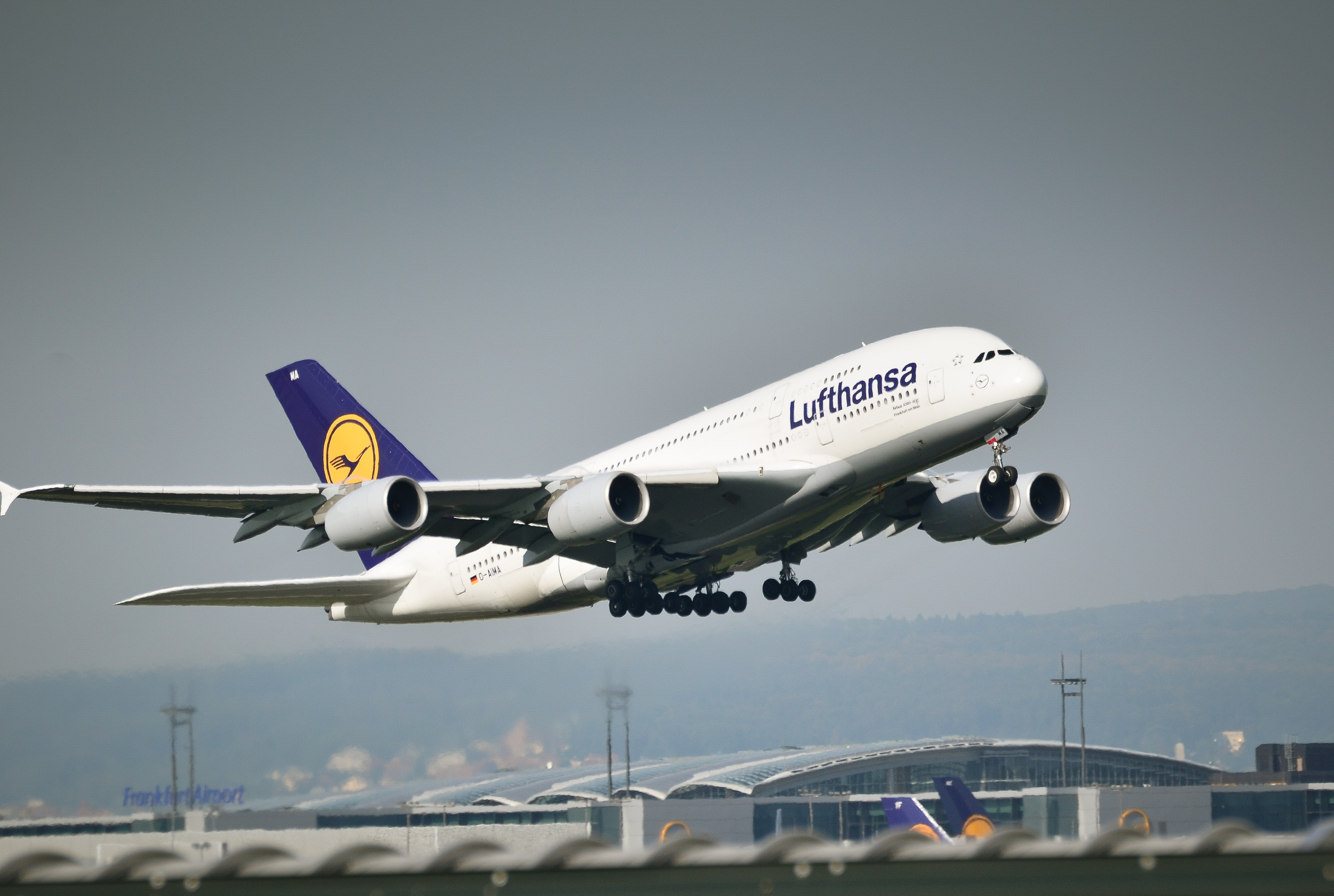 Lufthansa sees increased bookings with Europe easing entry restrictions